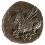 Pegasus: the reverse of the coin of Aphrodite.