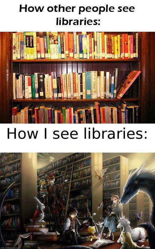 How I see libraries: