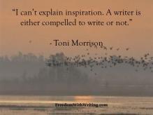 Toni Morrison 2